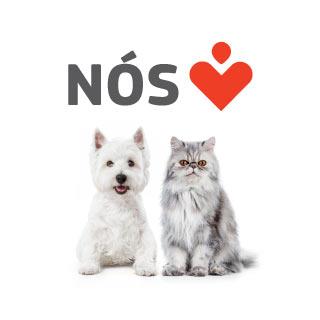 Nós amamos