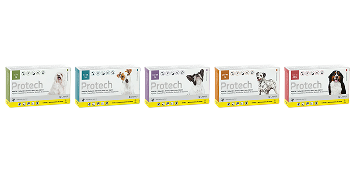 Pack - Protech Perros