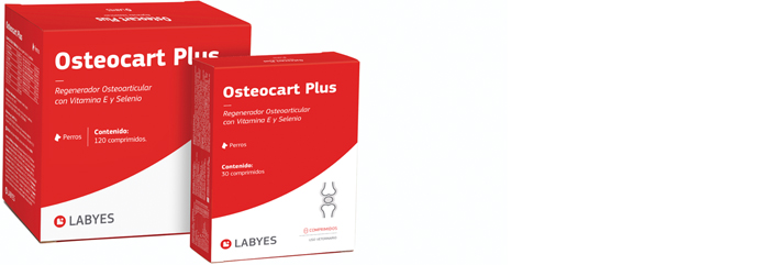Pack - Osteocart Plus
